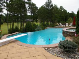 Residential - Shotcrete - Freeform - Spa - Vanishing Edge - Diving Board - Chesterfield,VA